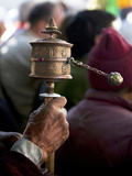 Ladakhi Prayer Wheel, Ladakh, India Photographic Print by Jaina Mishra