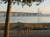 Mackinac Bridge, Mackinaw City, Michigan, USA Photographic Print by Peter Hawkins