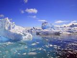 Icebergs and Ice Flows in the Artic Sea, Near Paradise Harbor, Antarctica Stampa fotografica di Miva Stock