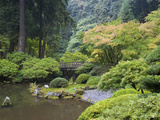 The Strolling Pond with Moon Bridge in the Japanese Garden, Portland, Oregon, USA Photographic Print by Greg Probst