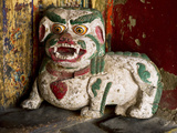 Animal by Hemis Monastery, Ladakh, India Photographic Print by Jaina Mishra
