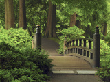 Moon Bridge after the Rain: Portland Japanese Garden, Portland, Oregon, USA Photographic Print by Michel Hersen