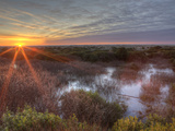 Sunset over Wetlands at Ocean Shores, Washington, USA Photographic Print by Tom Norring