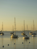 Sailboats Moored Off Puerto De Yates, Colonia Del Sacramento, Uruguay Photographic Print by Inger Hogstrom