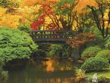 Moon Bridge in Autumn: Portland Japanese Garden, Portland, Oregon, USA Papier Photo par Michel Hersen