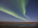 Aurora Borealis, Arctic National Wildlife Refuge, Alaska, USA Photographic Print by Hugh Rose