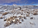 Snow-Covered Alabama Hills, California, USA Photographic Print by Dave Welling