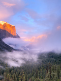 Alpenglow, Sunset Colors the Top of El Capitan, Yosemite, California, USA Photographic Print by Tom Norring