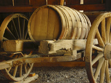 Old Feed Cart, Furnace Creek, Death Valley National Park, USA, California Photographic Print by Michel Hersen