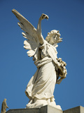 Angel on Vault, Recoleta, Buenos Aires, Argentina Photographic Print by Inger Hogstrom