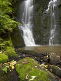 Horseshoe Falls, Matai Falls, Catlins, South Otago, South Island, New Zealand Photographic Print by David Wall