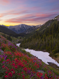 Badger Valley Sunrise, Olympic National Park, Washington, USA Photographic Print by Gary Luhm