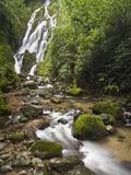 Chorro El Macho Falls, Anton El Valle, Panama Photographic Print by William Sutton
