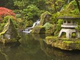 Stone Lantern at Koi Pond at the Portland Japanese Garden, Oregon, USA Fotografiskt tryck av William Sutton