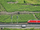 High Speed Train by Rhineland Vineyards, Koblenz, Germany Photographic Print by Miva Stock