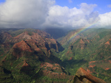 Rainbow over Waimea Canyon, Kauai, Hawaii, USA Photographic Print by Dennis Flaherty