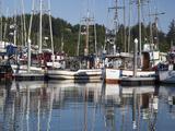 Fishing Boats at Port, Ilwaco, Washington, USA Photographic Print by Jamie & Judy Wild