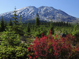 Early Autumn, Lahar, Mount St. Helen, Mount St. Helen Wilderness, Washington, USA Photographic Print by Michel Hersen