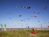 Kites, International Kite Festival, Long Beach, Washington, USA Photographic Print by Jamie & Judy Wild