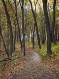 Trail to Great Bear and Little Bear Mound, Effigy Mounds National Monument, Iowa, USA Photographic Print by Jamie &amp; Judy Wild