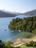 Whenuanui, Becks Bay, Marlborough Sounds, South Island, New Zealand Photographic Print by David Wall
