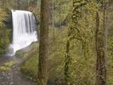 Middle Falls, Silver Falls State Park, Oregon, USA Photographic Print by William Sutton