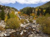Alluvial Fan, Rocky Mountain National Park, Colorado, USA Photographic Print by Jamie & Judy Wild