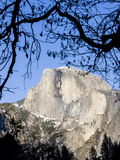 Framed Half Dome Seen from the Valley Floor, Yosemite, California, USA Photographic Print by Tom Norring