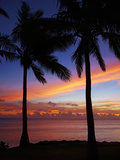 Sunset and Palm Trees, Coral Coast, Viti Levu, Fiji, South Pacific Photographic Print by David Wall