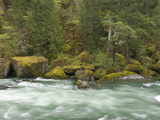 The Umpqua River, Oregon, USA Photographic Print by William Sutton