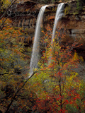 Waterfall, Zion National Park, Utah, USA Photographic Print by Scott T. Smith