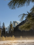 Half Dome from Valley Floor, Yosemite, California, USA Photographic Print by Tom Norring