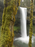 South Falls, Silver Falls State Park, Oregon, USA Photographic Print by William Sutton