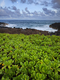 Poipu, Kauai, Hawaii, USA Photographic Print by Dennis Flaherty