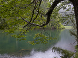 Lago Chico, Huerquehue National Park, Chile Photographic Print by Scott T. Smith