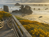 A Stairway Leads to the Beach in Bandon, Oregon, USA Photographic Print by William Sutton