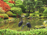 Heron Sculptures in the Portland Japanese Garden, Portland Japanese Garden, Portland, Oregon, USA Photographic Print by Michel Hersen