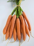 Bunch of Carrots, Italy Photographic Print by Nico Tondini