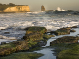Surf on Four-Mile Beach, Santa Cruz Coast, California, USA Photographic Print by Tom Norring