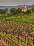 Leoness Cellars, Temecula, California, USA Photographic Print by Richard Duval