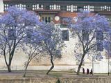 Monks, Punakha Dzong Palance, Bhutan Photographic Print by Dennis Kirkland