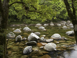 Boulders and Mossman River, Mossman Gorge, Daintree National Park, North Queensland, Australia Photographic Print by David Wall