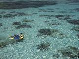 Snorkelers and Reef, Green Island, Great Barrier Reef Marine Park, North Queensland, Australia Photographic Print by David Wall