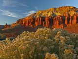 Panorama Point, Capitol Reef National Park, Utah, USA Photographic Print by Cathy & Gordon Illg