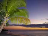 Palm Trees and Sunset, Plantation Island Resort, Malolo Lailai Island, Mamanuca Islands, Fiji Photographic Print by David Wall