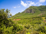 Kipu Ranch, Kauai, Hawaii, USA Photographic Print by Micah Wright