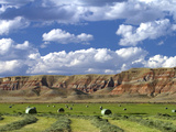 Red Rock Cliffs and Newly Harvested Alfalfa Hay Near Dubois, Wyoming, USA Photographic Print by David R. Frazier