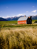 Red Barn in Field Near Joseph, Wallowa County, Oregon, USA Photographic Print by Nik Wheeler