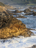 Surf Moves on Rock, Garrapata State Beach, Big Sur, California Pacific Coast, USA Photographic Print by Tom Norring