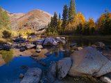 Sunrise at North Lake, Eastern Sierra Foothills, California, USA Photographic Print by Tom Norring